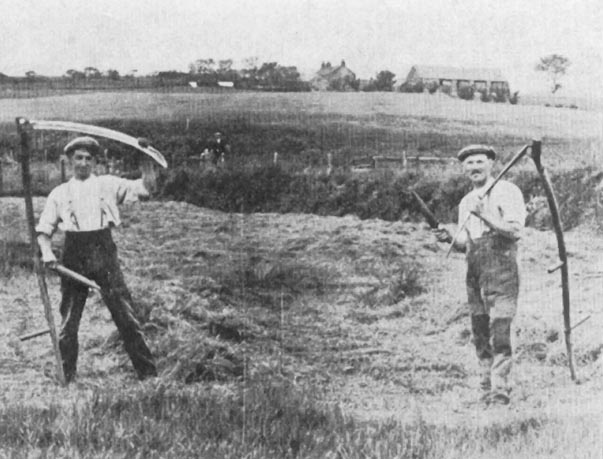 dbq 19th century farmers The problems facing the farmer of the late 19th century were very broad they  ranged from falling crop prices, to unfair treatment by the railroads, and also the.